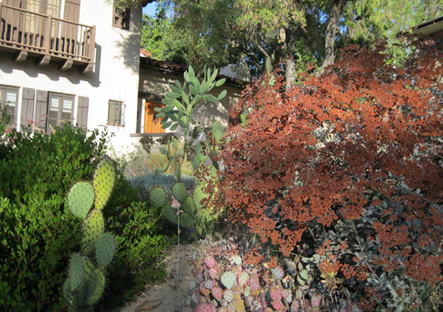 Garden 34 in Eagle Rock