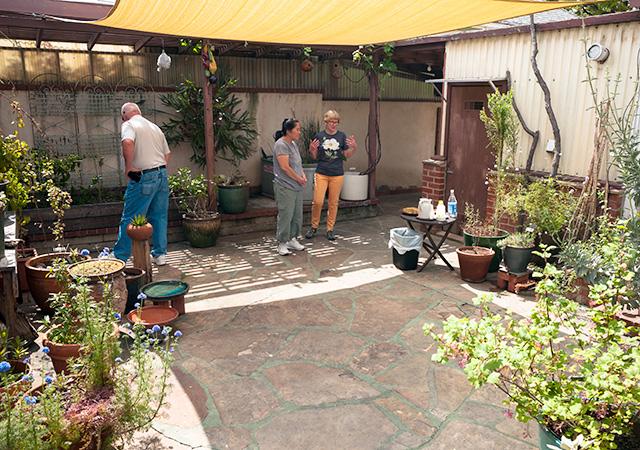Garden 9 in Santa Monica