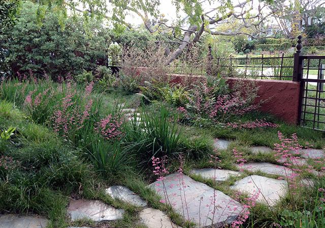 Garden 12 in Mar Vista