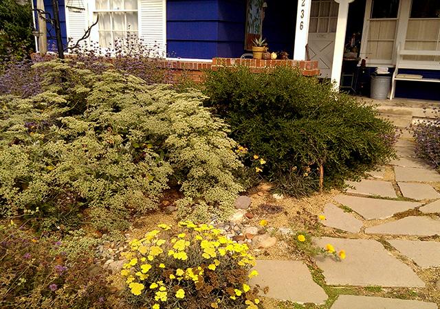 Garden 14 in Culver City