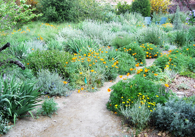Garden 21 in Downey