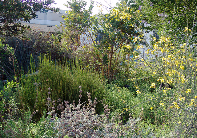 Garden 22 in Cudahy