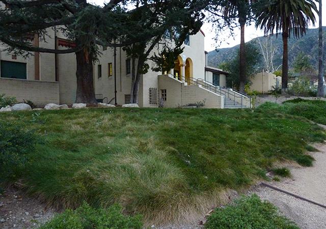 Garden 24 in Sierra Madre