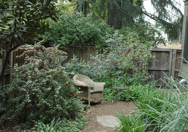Garden 32 in South Pasadena