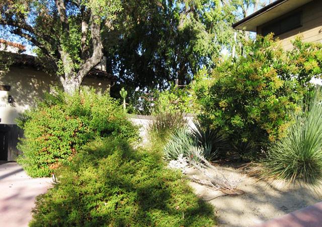 Garden 34 in Eagle Rock